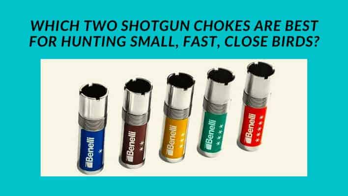 Which Two Shotgun Chokes Are Best for Hunting Small, Fast, Close Birds?